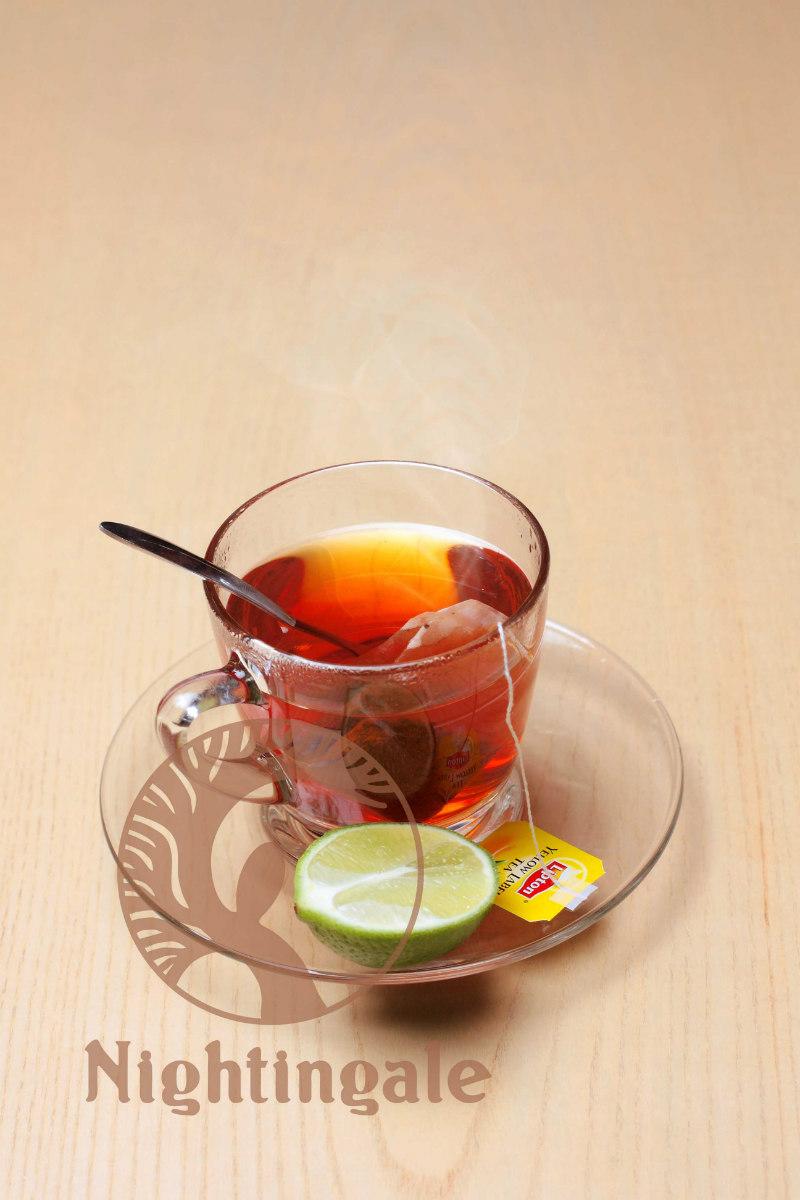 Lipton trà nóng
